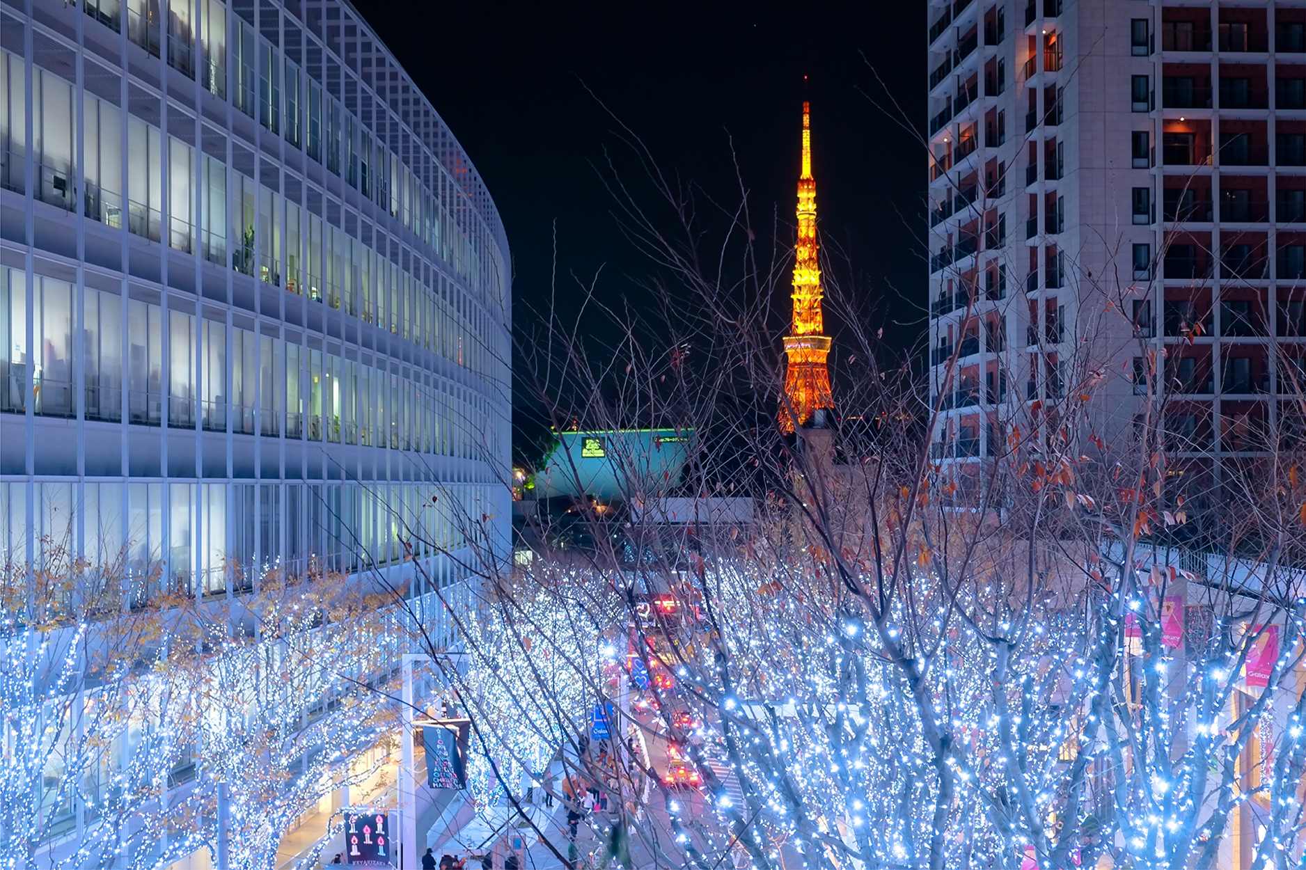 December in Tokyo Brings Cool Weather and Warm Lights